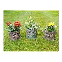 Best Value Here Set of 3 Novelty Carved Face Tree Trunk Garden Planter Resin Vase Flower Pot Ornament (3 Tree Trunk Planters)