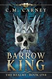 Barrow King:  An Epic LitRPG Adventure (The Realms Book One)