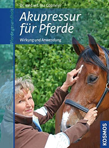 Akupressur für Pferde: Wirkung und Anwendung