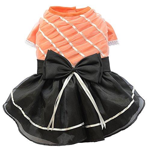 Doggy Dolly D360 Abendkleid für Hunde, orange/schwarz, Größe : XS (Spanische Spitzen-top)