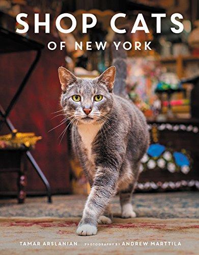 Shop Cats of New York por Tamar Arslanian