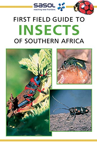 First Field Guide to Insects of Southern Africa (English Edition) (Termite Ant Carpenter)