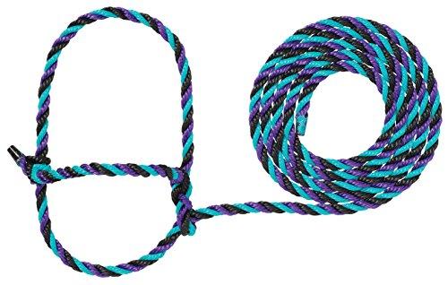 Weaver Leder Seil Kuh Halfter, 35-7900-H36, Purple/Black/Teal