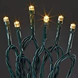 Hellum 577389 LED Lichterkette 200 LEDs warmweiß / 29,9 m/innen & außen/Zuleitung 10 m grün