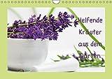 Helfende Kräuter aus dem Garten (Wandkalender 2019 DIN A4 quer): Sommerkräuter die helfende und heilende Wirkung haben können (Monatskalender, 14 Seiten ) (CALVENDO Gesundheit) -