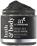 Best Natural Face Masks - ArtNaturals Dead Sea Mud Mask - for Face Review