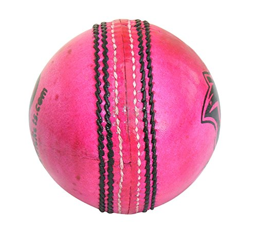 Three-Wickets-Pink-Panther-Leather-Cricket-Ball