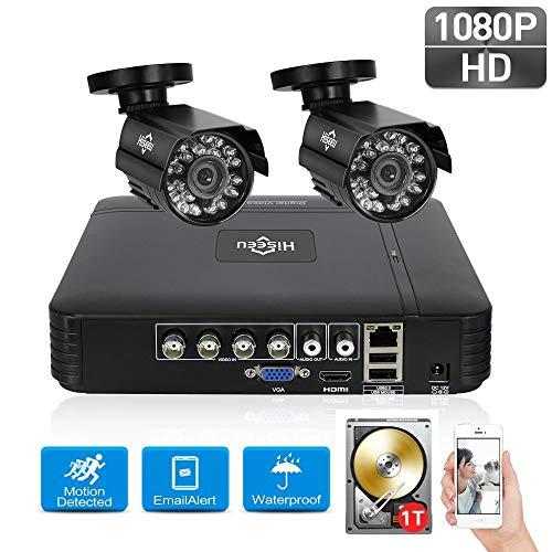Danieerstore Vorinstallierte 1T Festplatte 4 Kanal Überwachungskamera System 1080N Video DVR Recorder mit 2pcs HD 1080P Drinnen draußen Wasserdicht CCTV Kameras -