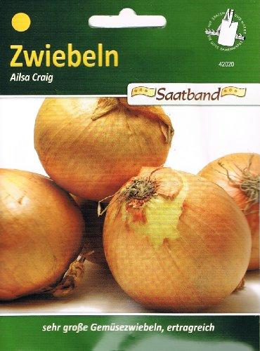 N.L.Chrestensen 42020, Zwiebeln, Ailsa Craig, Gelb