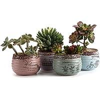 T4U Conjunto de 4 Estilo Rústico Cerámicos Planta Maceta Suculento Cactus Planta Maceta Planta Contenedor Vivero Maceta Macetas de jardín Macetas Envase