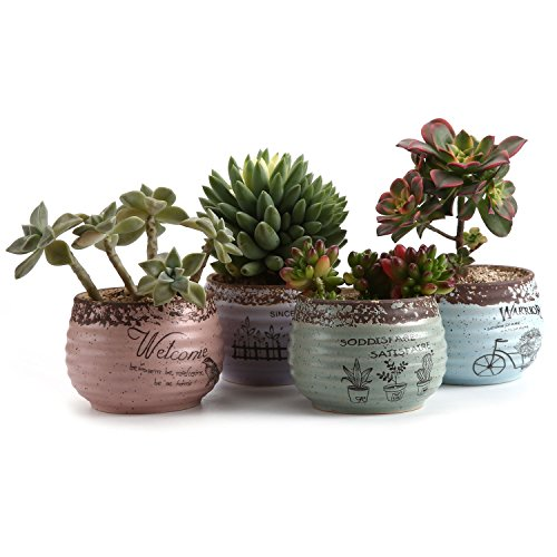 T4U 9.5CM Rustikale Art Runde Sukkulenten Töpfe Kaktus Pflanze Töpfe Mini Blumentöpfe alle Farben 4 Stücke Set