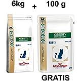 Royal Canin Obesity Management 6kg + GRATIS 100g Katzenfutter Nass