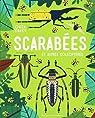 Scarabées et autres coléoptères par Davey