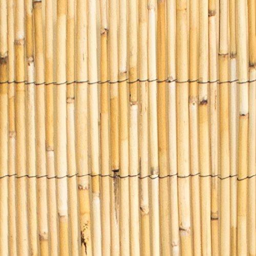 Sichtschutz Aus Schilfrohr, 2m x 4m, PapillonTM