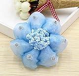 HSDDA Haarnetz, für Mädchen, Prinzessinnen, Tanzbälle, blau, 10 cm
