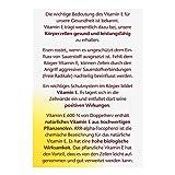 Doppelherz Vitamin E 600 N Kapseln, 40er, 1er Pack (1 x 13 g) - 3