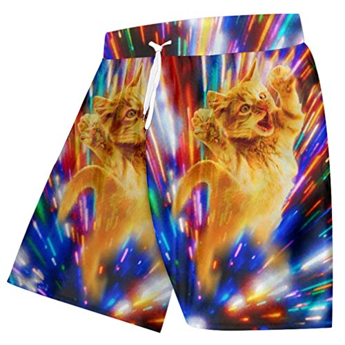 Mode Sommer Coole Bottom Boxer Hose männer Lustige Print Bunte Ray Cat 3D Strand Shorts Board Shortsping Colorful Ray Cat XL