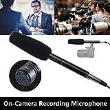 LanLan Professionelles Kondensatormikrofon für Reporter Interview Live Aufnahme