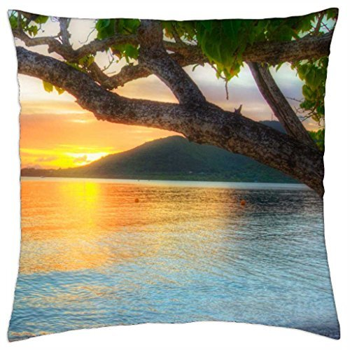 hiding-behind-the-peninsula-throw-pillow-cover-case-18