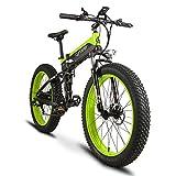 Extrbici, bicicletta elettrica pieghevole XF690, da 500 W, 48 V blackgreen