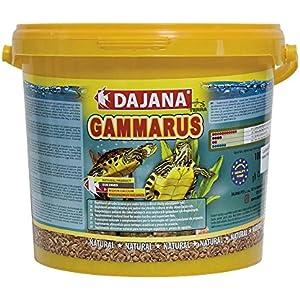 DAJANA Gammarus, 1er Pack (1 x 500 g)