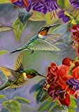 Best Briarwood Lane Garden Decors - Hummingbird Spring Garden Flag Vibrant Flowers Flying Wildlife Review