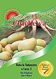 Arise with Chichewa: Buku la Ophunzira a Fomu 3 (Chichewa) (English Edition)