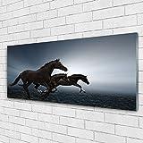 Impression sur verre de Tulup 125x50 cm - Image - Tableau - Photo décorative panoramique - Animaux Chevaux