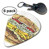 Hamburger Food Bread Sandwich Guitar Picks Instruments Accessories (6pc) Celluloid Paddles Plectrums for Thin Medium Heavy Gauges Gift.46mm