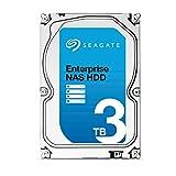 Seagate Enterprise NAS HDD - 3 TB - interne Festplatte, ST3000VN0001 (3,5 Zoll), 7200rpm, 128 MB Cache, SATA III für NAS-Betrieb