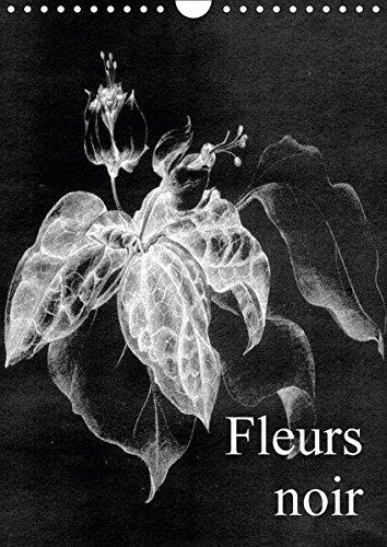 Fleurs noir (Wandkalender 2018 DIN A4 hoch): Fleurs Noir - ist ein künstlerischer Streifzug mit Kreidestift auf koloriertem, leinenstrukturiertem ... ... [Kalender] [Apr 01, 2017] Küster, Friederike