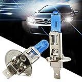 Minshao 2Pcs H1 55W Halogen helles weißes Auto Scheinwerfer Birnen Lampe 12V 6000K