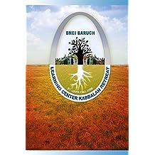 Bnei Baruch - ARI Retreat (English Edition)