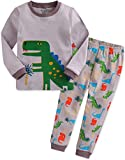 Vaenait baby Kinder Jungen Nachtwaesche Schlafanzug-Top Bottom 2 Stueck Set Dino King-Grey L
