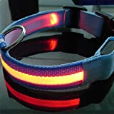 LED Halsband Light - LED Leuchtschlauch Leuchthalsband Hundehalsband Hund Orange M
