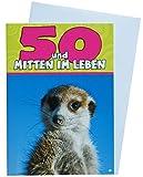 Depesche Tierkarte zum 50.Geburtstag Erdmännchen Nr.49_A