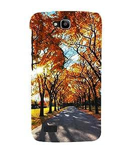 Fuson Designer Back Case Cover for Huawei Honor Holly (Sunshine Full Bloomed Trees Orange Trees Spring Autumn)