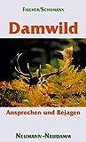 Damwild: Ansprechen und Bejagen
