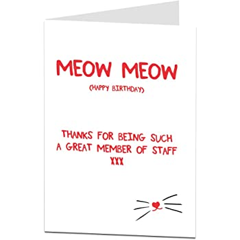 Funny Happy Birthday Card From The Cat For Pet Lover