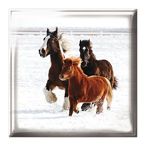 medici-christmas-cards-med8691-luxury-box-of-12-cards-galloping-horses