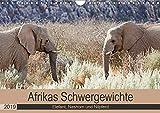 Afrikas Schwergewichte Elefant, Nashorn und Nilpferd (Wandkalender 2019 DIN A4 quer): Afrikanische Dickhäuter in der Natur (Monatskalender, 14 Seiten ) (CALVENDO Natur)