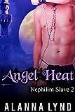 Angel Heat: An M/M Mpreg Angel/Demon Fantasy Romance (Nephilim Slave Book 2) (English Edition)