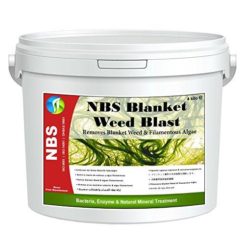 4kg-blanket-weed-treatment-removes-string-algae-nbs-blanket-weed-blast-treats-up-to-50000l