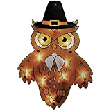 16 Lighted Pilgrim Owl Thanksgiving Window Silhouette Decoration by Impact