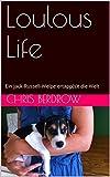 Loulous Life: Ein Jack-Russell-Welpe ertapp(s)t die Welt
