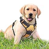rabbitgoo No-Pull Hundegeschirr für mittelgroße Hunde Welpengeschirr Einstellbar Weich Geschirr Sicher Kontrolle Brustgeschirr Gepolstert Dog Harness Orange M