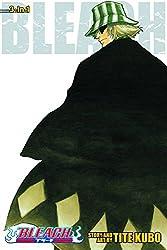 Bleach (3-in-1 Edition) Volume 2
