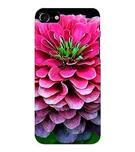 EPICCASE Big pink flower Mobile Back Case Cover For Apple iPhone 7 (Designer Case)