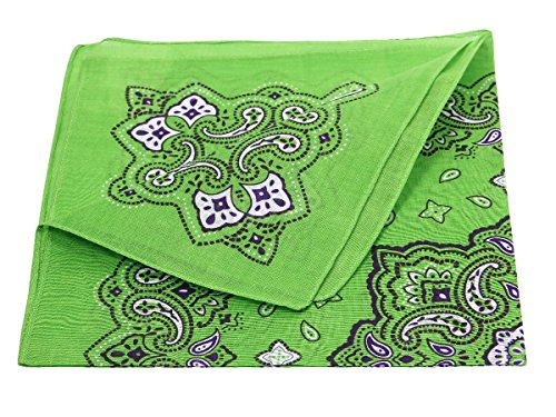 Bandana di colori e motivi diversi (BA-193) verde multifunzione classica foulard scialle collo rocker biker (Pirata Mappa)