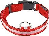 HAVA Universal LED Batterie Hundehalsband Sicherheitsband - mit 3 Modi - Größe S 28-35cm